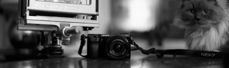 new and old mirrorless cameras