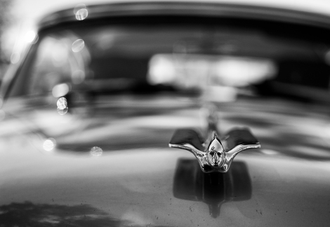 Hood ornament from a vintage Cadillac