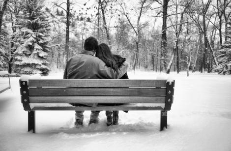 Winter Wonderland Park Bench