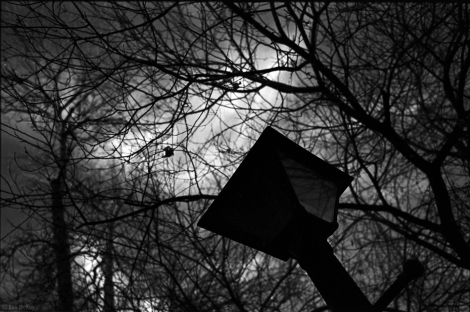 Red Filter Lamp Post - Leica MP