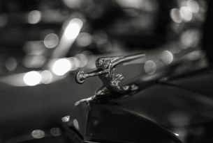 Bokeh Hood Ornament